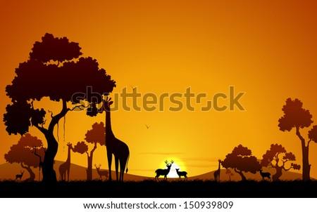 illustration of giraffe and