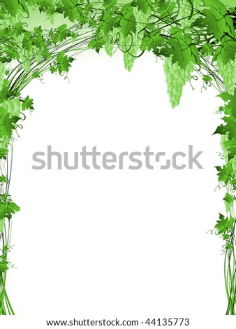 grape vine clipart. of green grape vine frame