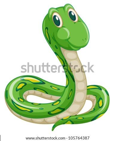 stock-vector-illustration-of-green-snake-on-a-white-background