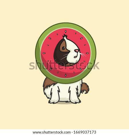 Illustration of guinea watermelon pig
