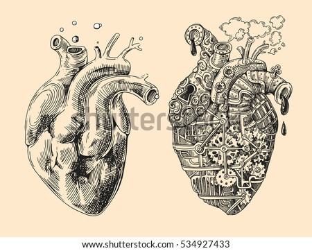 illustration of 2 hearts