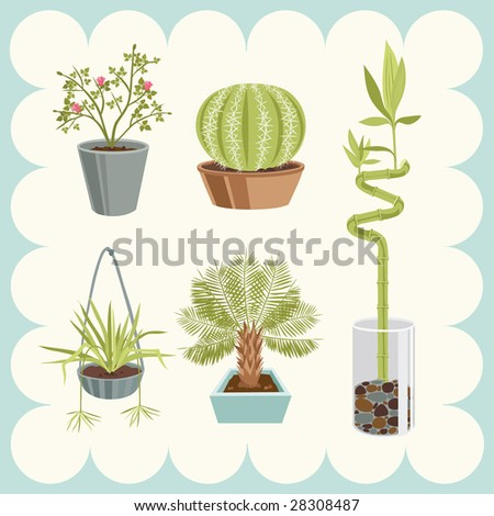 Illustration of Home Plants