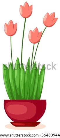 illustration of isolated a pot of tulips on white background