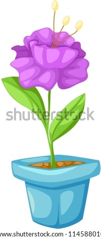 illustration of isolated flower in a pot on white