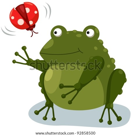 illustration of isolated frog