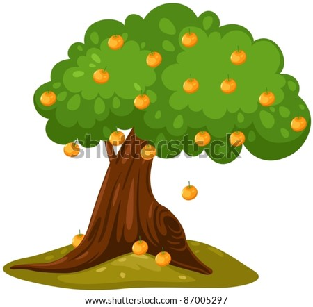 illustration of isolated orange tree on white background