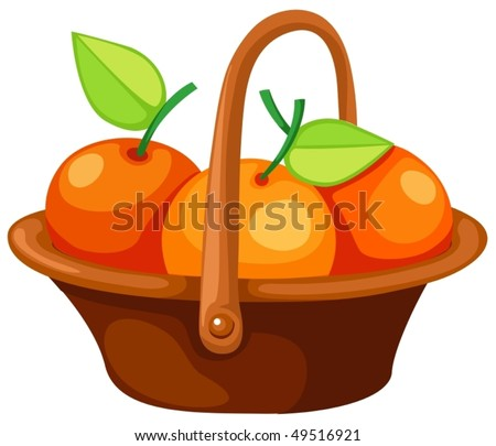 illustration of isolated  oranges in basket on white background