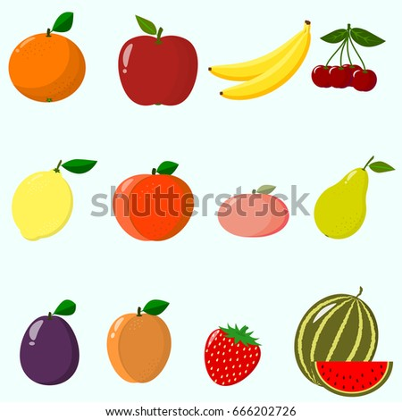 illustration of juicy and ripe