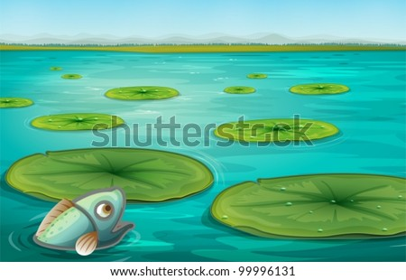 illustration of lily pads on