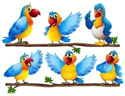 Illustration of many parrots on vine