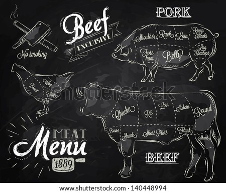 Illustration of meat for menu, steak, cow, pig, chicken divided into pieces in vintage style drawing with chalk on chalkboard background.