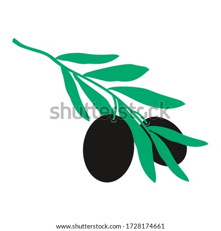 illustration of olives vector