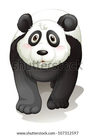 illustration of panda on a white background