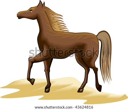 Illustration of pet animal horse