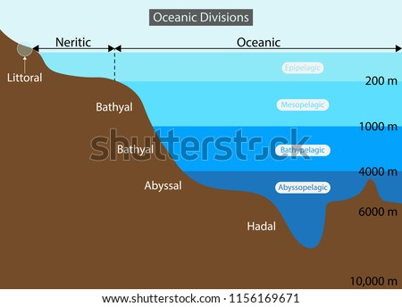 illustration of Physical Geography, Layers of the Ocean diagram, View of the Earth where all five oceans visible Earth's oceans Arctic, Atlantic, Indian, Pacific and Southern Ocean