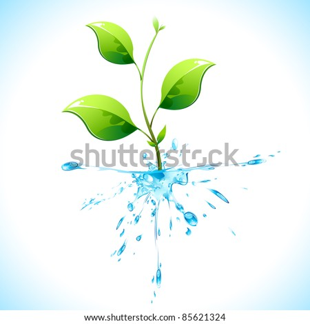 illustration of plant with water root on abstract background