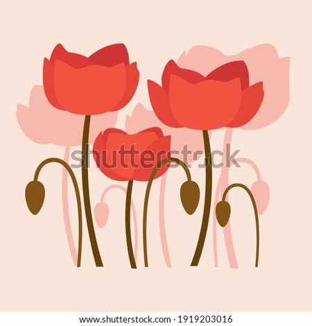 illustration of poppy flowers