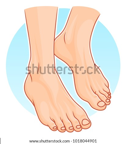 Shutterstock Illustration of realistic human feet on the blue round background.