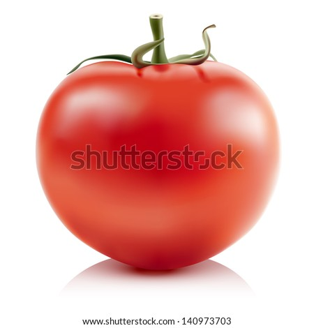Illustration of red tomatoes isolated on white background. Vector.