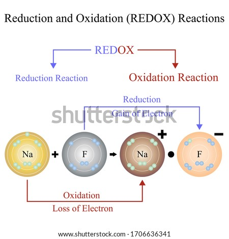 Illustration of science. Reduction–Oxidation or redox reaction. Chemical reaction. Redox reactions are characterized by the actual or formal transfer of electrons between chemical species.