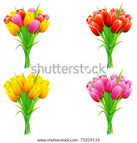 illustration of set of bunch of tulip in a bouquet on isolated background