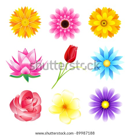 illustration of set of colorful flower on isolated background