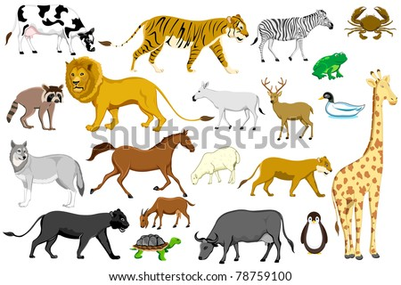 illustration of set of different animal on isolated background - stock vector