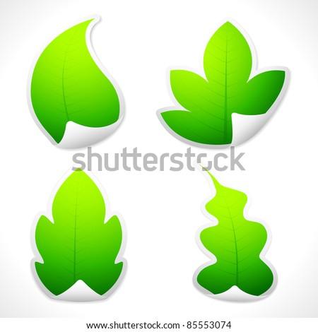 illustration of set of sticker in different leaf shape