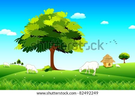 Grassland clipart information keywords and pictures sheep grazing in grassland grassland clipart voltagebd Choice Image