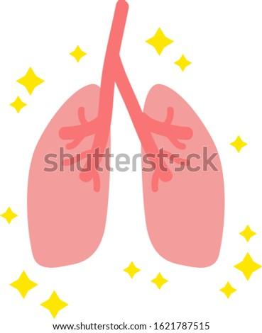 Illustration of simple healthy lungs internal organs / digestive organs