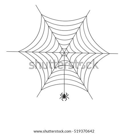 illustration of spider web on a