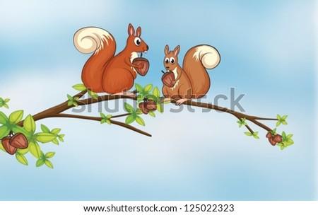 illustration of squirrels