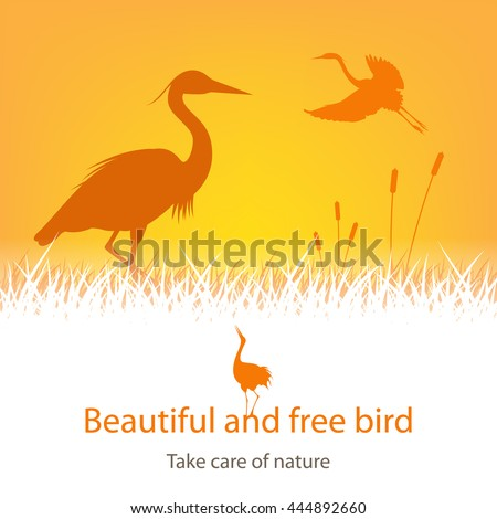 illustration of storks amongst