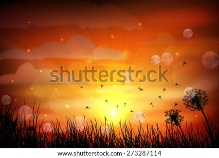 illustration of sunrise and