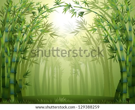 illustration of the bamboo