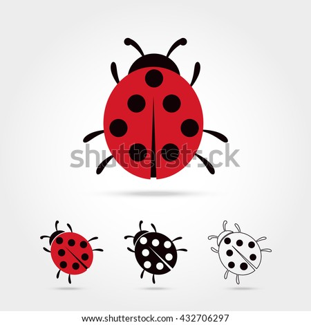 illustration of the ladybug