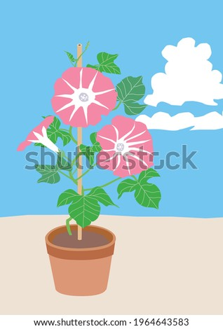 illustration of the potted pink