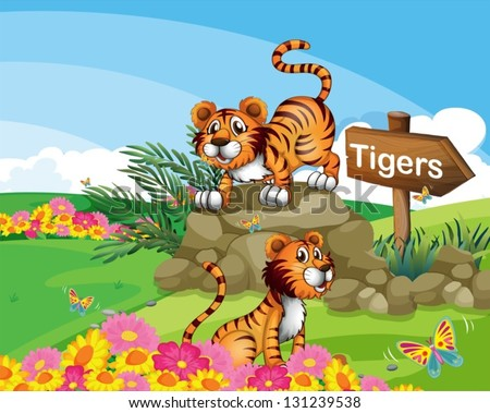 illustration of the two tigers