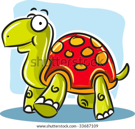 Turtle Shell of Turtle With Red Shell
