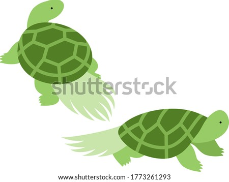 Illustration of two Japanese style turtles Turtles with algae attached to their shells that look like long tails, and are considered a lucky charm for longevity in Japan.