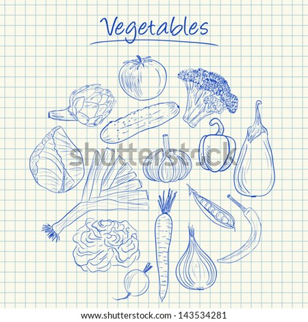 Illustration of vegetables ink doodles on squared paper