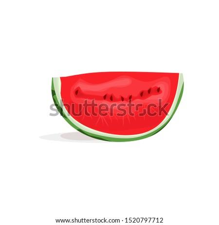 illustration of watermelon realistic vector.realistic vector of watermelon clip art