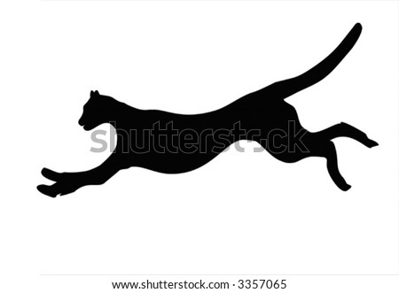 Illustration of wild animal, family of cats