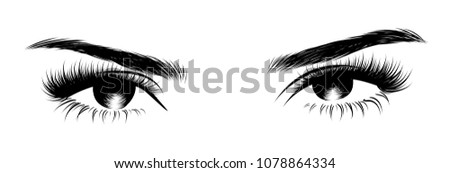 Illustration of woman's sexy expressive interesting catchy eye with perfectly shaped eyebrows and full lashes.Hand-drawn Idea for business visit card, typography vector.Perfect salon look.Smoky style