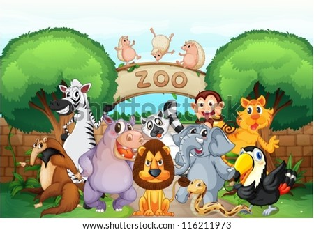 illustration of zoo and animals