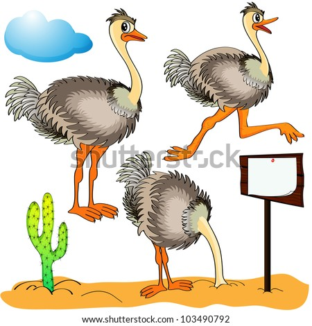 stock-vector-illustration-ostrich-runs-c