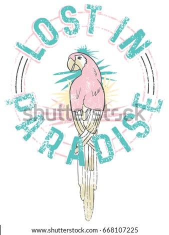 illustration parrot graphic for t shirt print