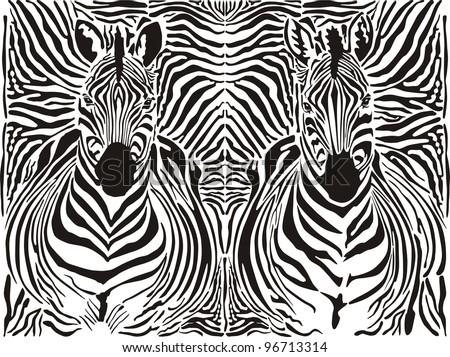 illustration pattern background zebras skins and heads