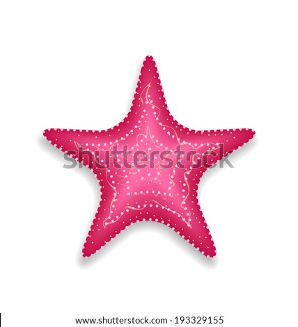 illustration pink starfish