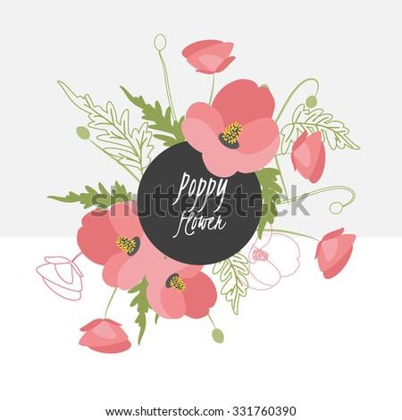 illustration poppy flower